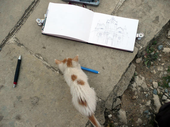 Chat croqueur, Stage Carnet de voyage dessin et aquarelle en Crète